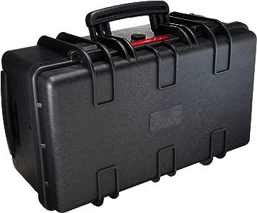 AmazonBasics Hard Camera Case  Large...