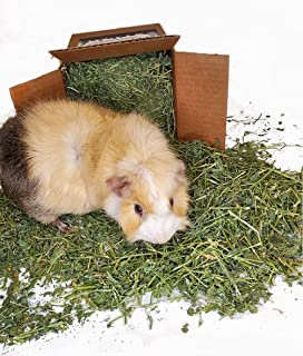 High Desert Alfalfa Hay - Dried Natural Alfalfa Hay for Rabbits, Guinea Pigs, Chinchillas, and Ferrets - Protein and Fiber...