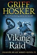 viking raid book