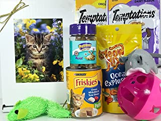 Cat Gift Box Basket for A Favorite Feline Fur Baby - Send These Treats and Toys to a Furry Cat/Kitten / Kitty Friend! Prime