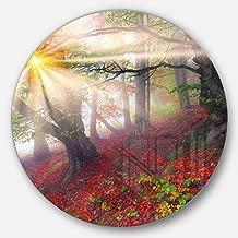 """designart mt9531-c23""""لأشعة الشمس في الغابة بعد عاصفة الثقيلة المناظر الطبيعية قرص صورة"""" أعمال فنية جدارية معدنية ، 23"""" x 58سم ، باللون الأحمر"""