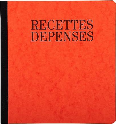 EXACOMPTA 22101 Manifold Piqûre 190x 210mm 80 Pages Recettes Dépenses Assorties