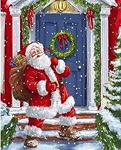 Safdie & Co. Christmas 50X60 Santa at The Door Ultra Soft Throw, Grey