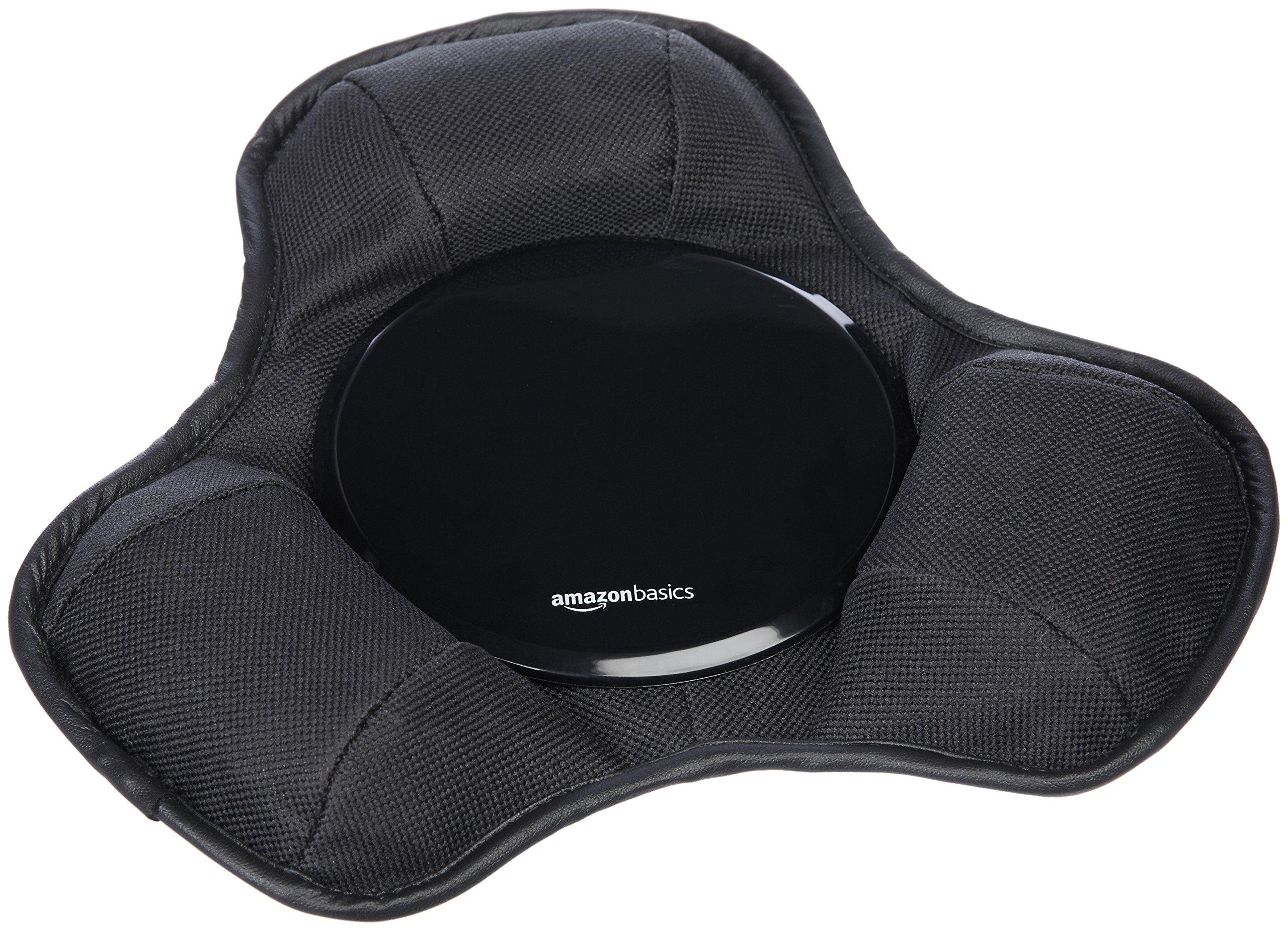 AmazonBasics Dashboard Magellan Portable Navigators