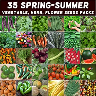 Mixed Spring Summer 2000 Heirloom Seeds Vegetable HERB Flower Garden 35 pks Bulk