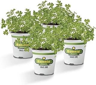 non gmo herb plants