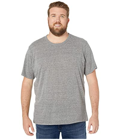 Alternative Big Tall Eco Crew T-Shirt (Eco Grey) Men