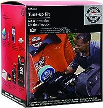 Briggs & Stratton 5119B Tune-Up Kit
