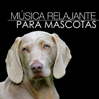 Música Relajante para Mascotas - Canciones de Relajacion Profunda con Sonidos Naturales para Gatos y Perros