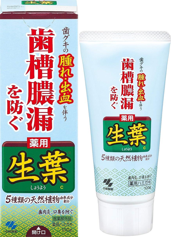 細菌中国誕生生葉(しょうよう) 歯槽膿漏を防ぐ 薬用ハミガキ ハーブミント味 100g 【医薬部外品】