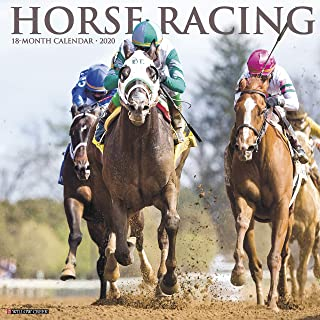 Best horse racing calendar 2019 Reviews
