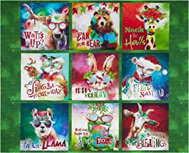 Fabric Editions 3 Wishes Sassy Holiday 36'' Panel Fabric, Green