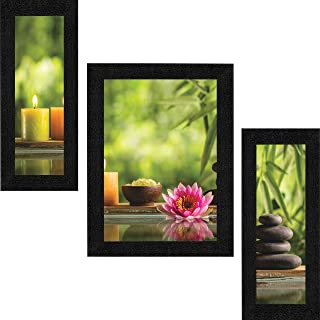 SAF Set of 3 Lotus Flower Floral UV Coated Home Decorative Gift Item Framed Painting 13.5 inch X 22.5 inch SANFSAA9187