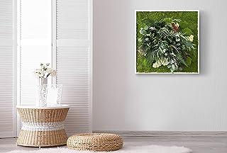 """""""Il Fosco"""", cuadro vegetal con musgo plano y plantas naturales estabilizadas, Moss Frame, sin manutención, Jungle Moss, ja..."""