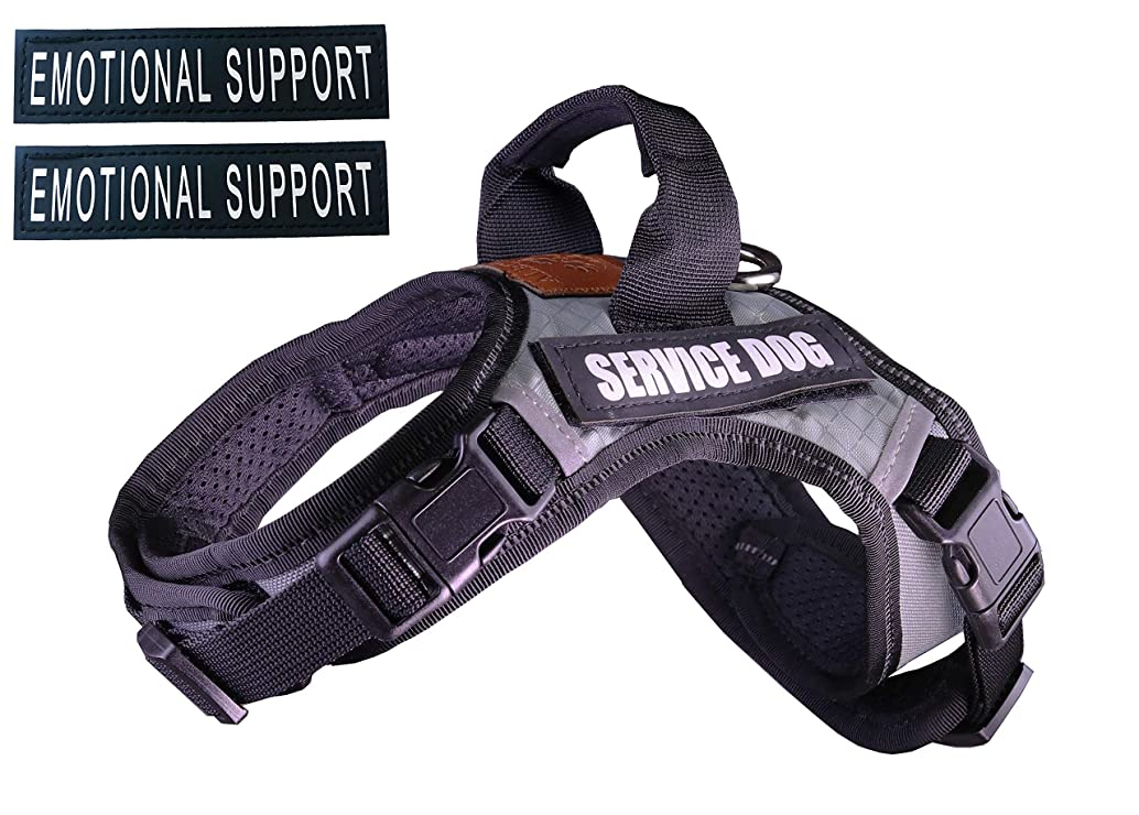 ALBCORP Service Dog Vest Harness - Extra Emotional Support Patches - Woven Nylon, Neoprene Handle, Adjustable Straps, Comfy Mesh Padding, and 2 Hook and Loop Removable Patches. Red/Black/Gray/Blue