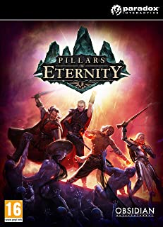 Pillars of Eternity Hero Edition PC Game