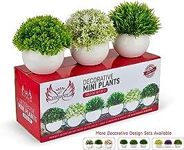 Farmhouse Plants with Pots - Artificial Plants for Decoration - Office/Kitchen/Bathroom/Bedroom/Mantle/Balcony/Home Decor - Faux Plants Set - Farmhouse Decor - Home Decor (Green/Green/White)