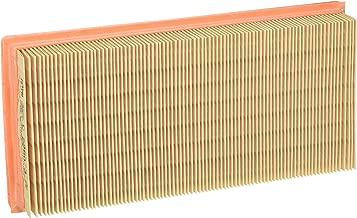 Amazon.es: filtro aire lombardini