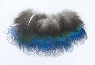 ALL in ONE Natural Feather for DIY Craft (Peacock Plumage)