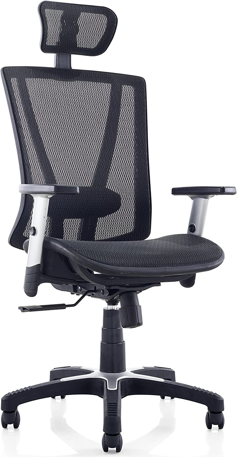 Ergomax Office Fully Meshed Ergonomic Height Adjustable Office Chair w Armrests & Headrest, 52 Inch Max, Black