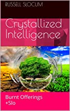 Crystallized Intelligence: Burnt Offerings +Slo (Death Revives Life Book 1)