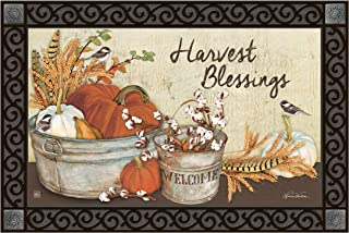 Studio M MatMates Farmhouse Pumpkins Fall Harvest Decorative Floor Mat Indoor or Outdoor Doormat with Eco-Friendly Recycled Rubber Backing, 18 x 30 Inches