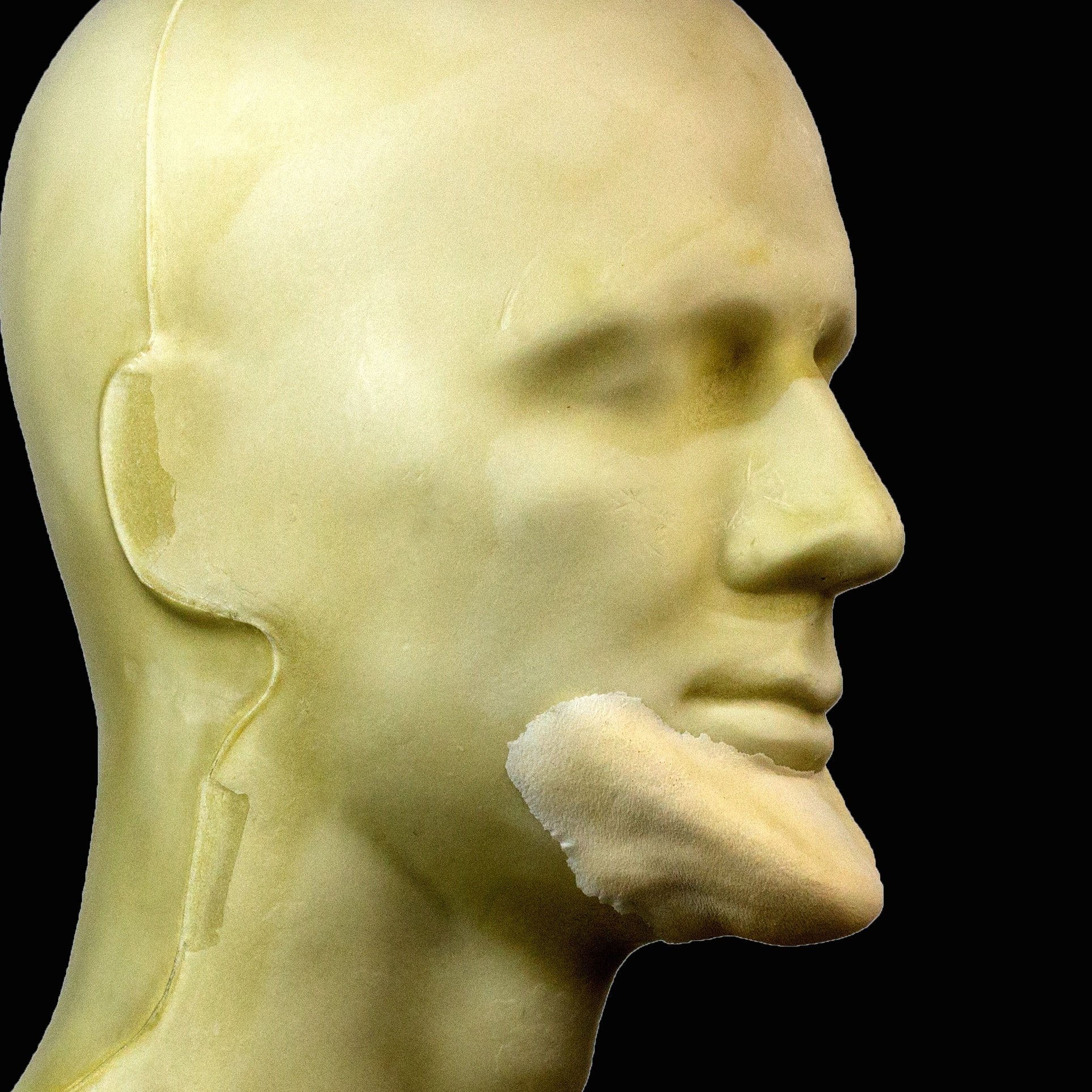 Pig Nose FRW-050 Makeup and Theater FX Rubber Wear Foam Latex Prosthetic