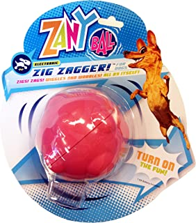 R2P Group Zany Bunch Zany Ball - Wiggling, Jiggling, Electronic Dog Toy