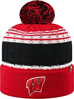 Best wisconsin badgers winter hat Reviews