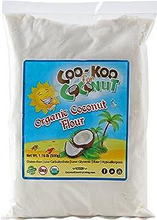 Coconut Flour Organic 1 lb, Raw, Premium Low Carb Flour, Keto, Paleo Friendly