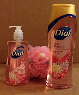 Dial Body Wash with Bath Sponge Puff Set (Himalayan Pink Salt Plus Hand Soap)