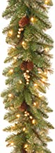 National Tree 9 Foot by 10 Inch Glittery Pine Garland with Gold Berries and 100 Clear Lights (GPG3-341-9A)