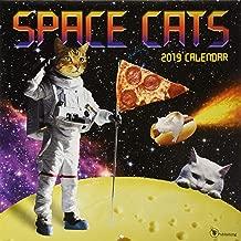 2019 Space Cats Wall Calendar