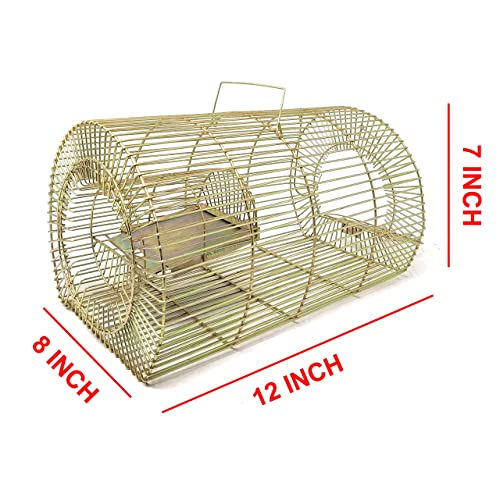Mouse Trap Buy Mouse Trap Online At Best Prices In India Amazon In