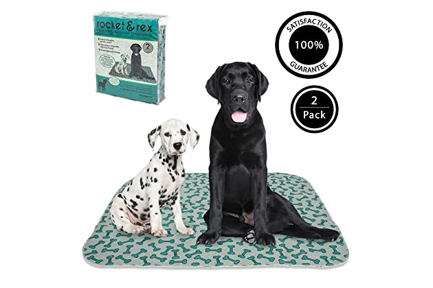 Best Waterproof Rugs For Pets Amazon Com