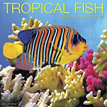 tropical fish calendar
