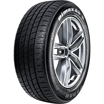 Radar Tires Dimax AS-8 Touring Radial Tire - 205/65R16 95V