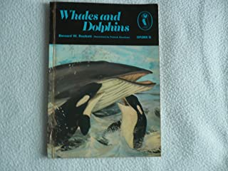 Whales And Dolphins (Puffin Books)