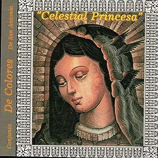 Viva La Virgen De Guadalupe
