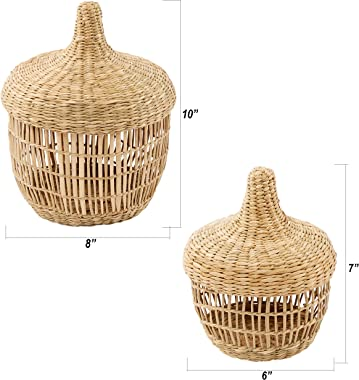 Artera Small Handwoven 2 Piece Wicker Baskets with Lid, Seagrass Decorative Baskets for Keys, Accessories & Clutter Items.
