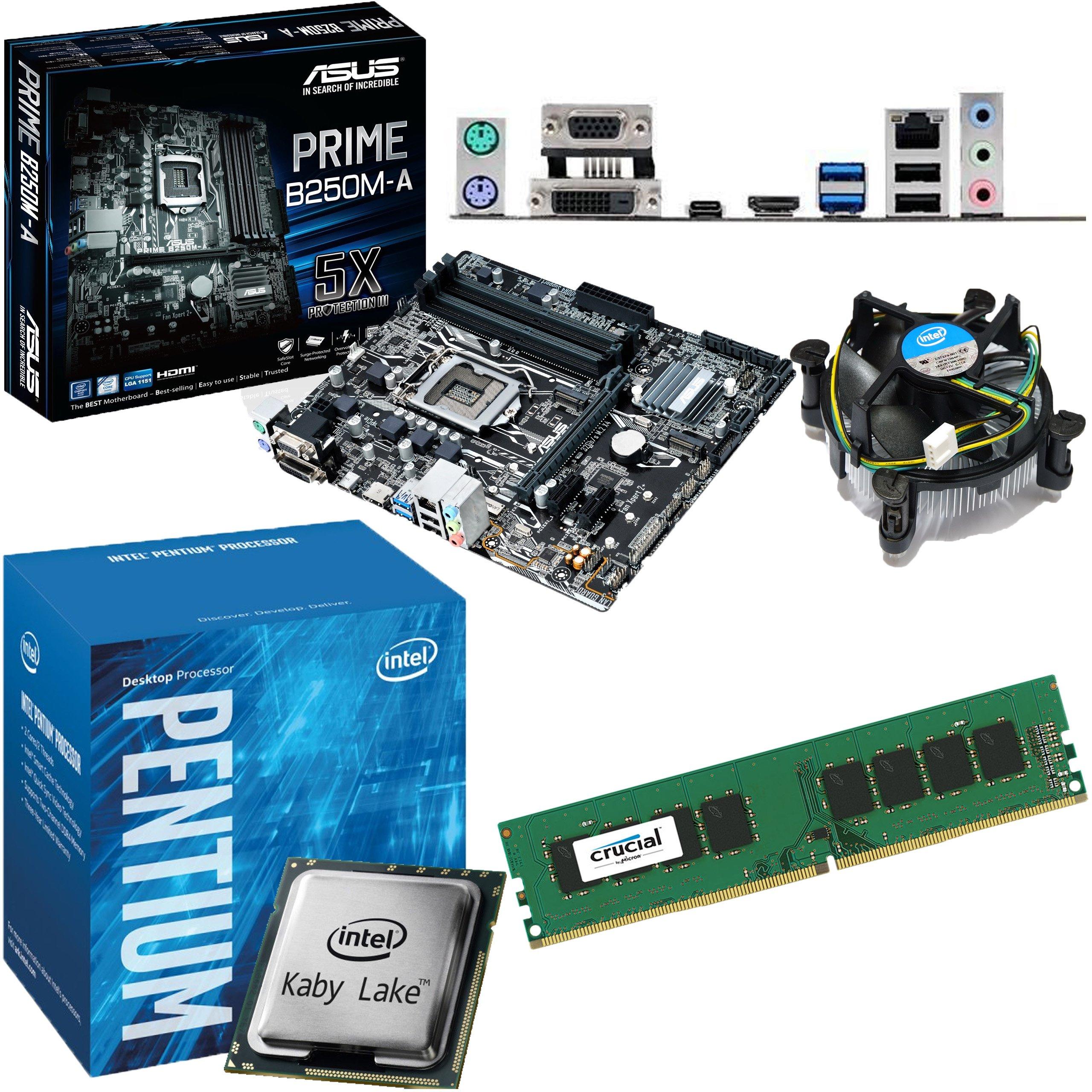 Intel KABY lago Pentium g4560 3,5 gHz, placa base Asus Prime b250 m-a pre-instalado Bundle No RAM 4GB DDR4 2400Mhz: Amazon.es: Informática