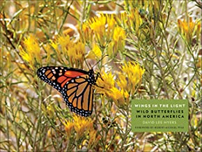 Wings in the Light: Wild Butterflies in North America