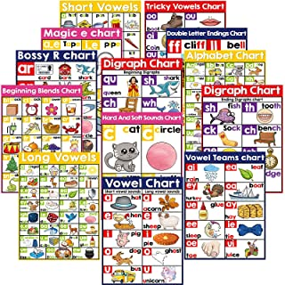 13 English Phonics Poster Language Arts Charts for Kids Toddler Learning Vowels Posters for Kindergarten, Preschool, Prima...