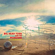 big head todd and the monsters wipeout turn