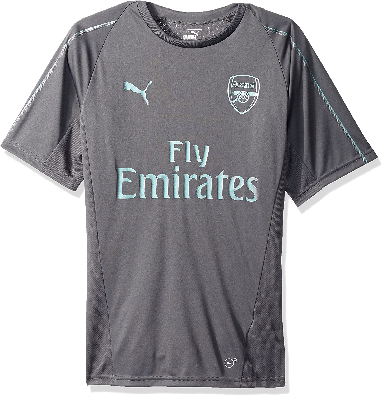 PumaMens Arsenal Fc Training Jersey Ss with EPL S, Large, Iron Gate