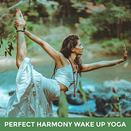 Meditation for Good Morning by Yoga Sounds Healing ...
