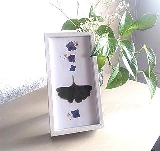 Cuadro con flores naturales secas. Decoración pared o mesa. Minimalista.