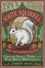 Brevard, North Carolina - White Squirrel Vintage Sign (20x30 Premium 1000 Piece Jigsaw Puzzle, Made in USA!)