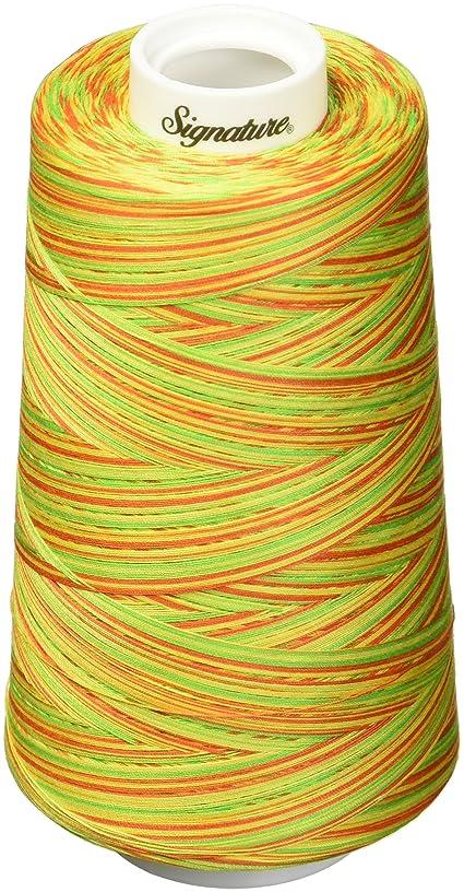 Signature Citrus Thread, 40wt/3000 yd, Variegated