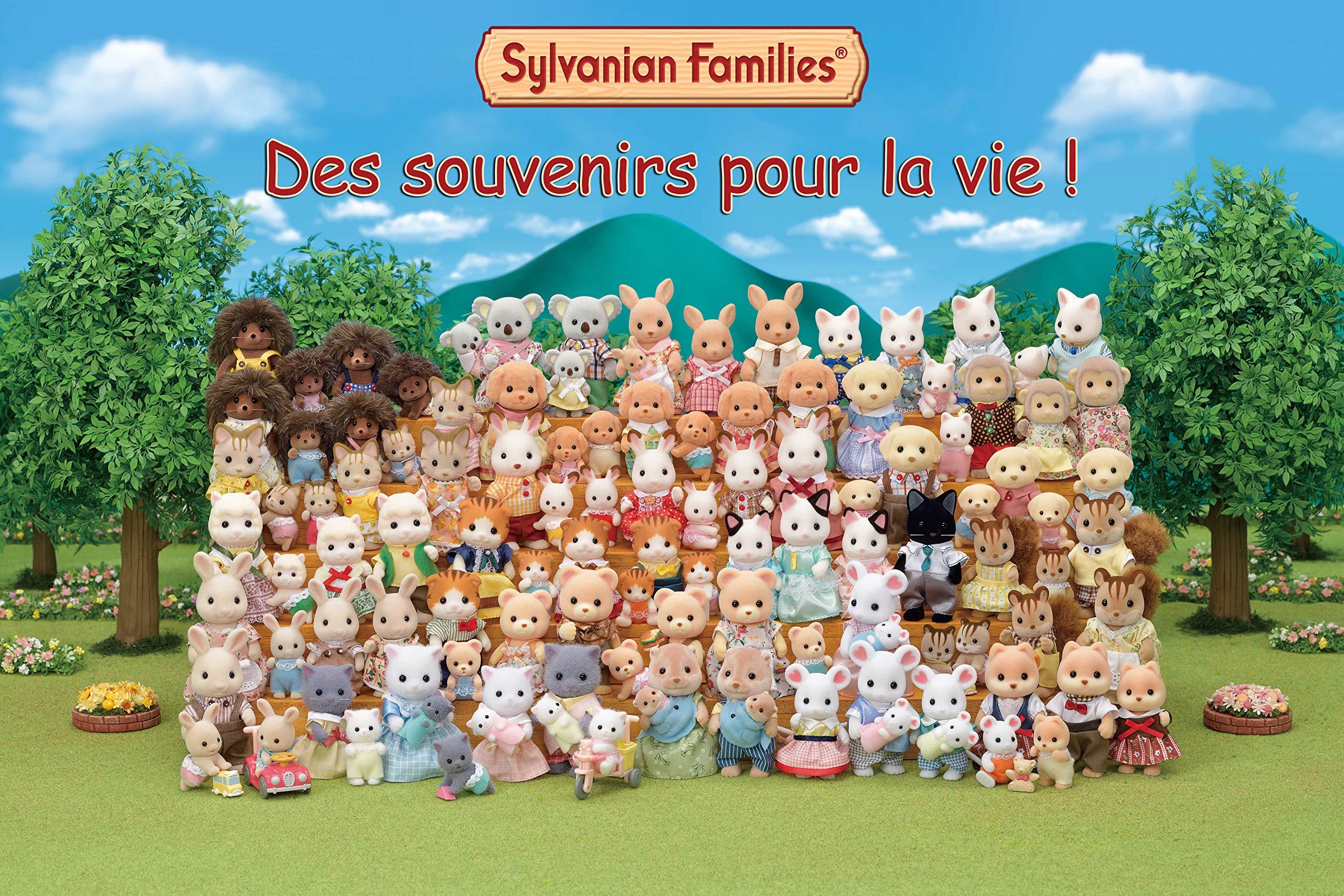 Amazon.es: Sylvanian Families - 4457 - Vamos a jugar al parque: Juguetes y juegos